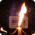 Click to read our review of the Singapore Night Safari!