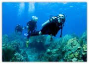 Scuba Diving with your Kids