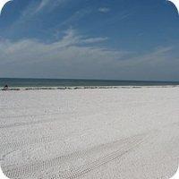 Free Travel Videos: Tampa Florida Vacations