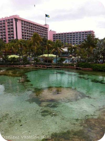 100 hotels in bahamas atlantis mayan temple shark for Terrace view atlantis royal towers