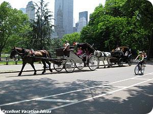 NYC Neighbohoods