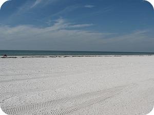 Tampa Florida Vacations