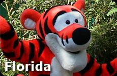 Cheap All inclusive Florida