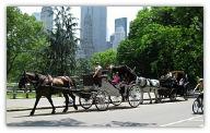 World Travel Guide - New York City