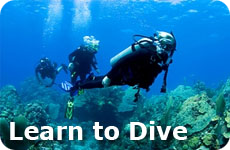 Vacation with kids, Learn to Dive