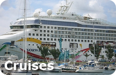 Vacation Ideas, Cruises