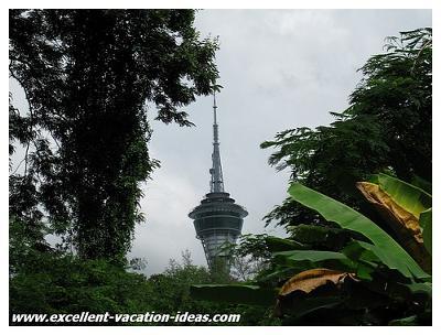 Macau Tower peaking through the trees